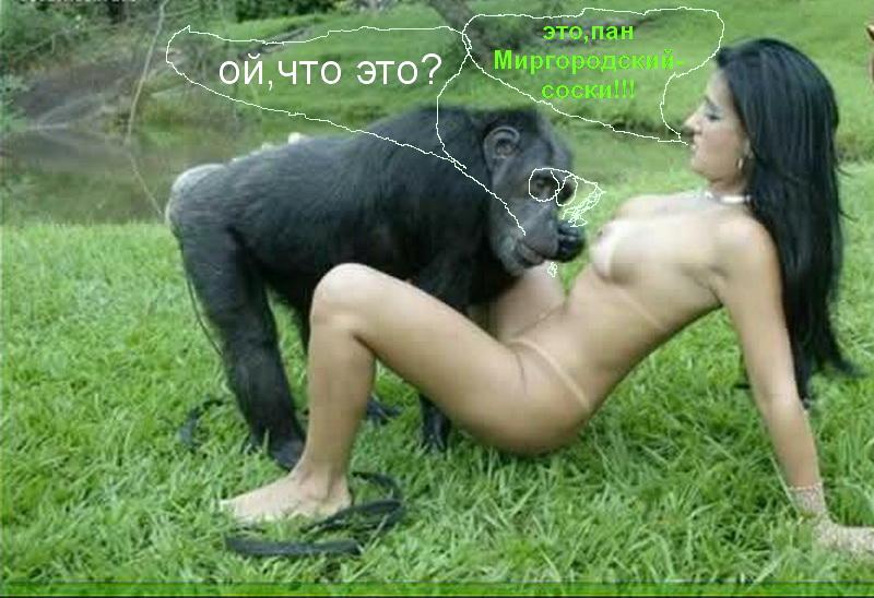 Порно девушка с обезьяной смотреть